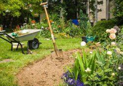 Starten Sie Ihren Garten